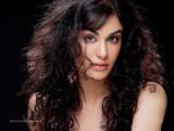 Adah Bollywood Wallpapers Hot Imágenes de Adah