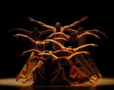 Revelaciones Coreografía de Alvin Ailey Universida...