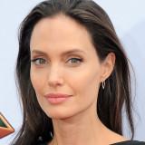 Angelina jolie angelina jolie viste el vestido de...