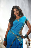 Anjali Fotos de Actriz Fotos de Blue Saree
