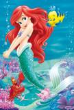 Ariel La Pequeña Sirena