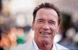 Arnold Schwarzenegger no participó en la secuela d...