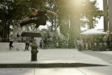 Brandon Westgate Skateboarding