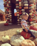 Galería Vanessa Lachey s Perfect Lil Pumpkin