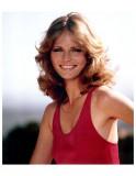 Cheryl Tiegs El modelo que hizo un chapoteo en la...