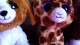 Beanie boo colección gritar a cutie