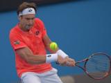 David Ferrer en acción en el cuarto día del Open d...