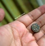 Didda Rani Moneda 9791005 AD