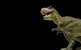 Dino Adventure Palabras clave relacionadas Sugeren...