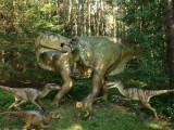 Dino Park Foto de Dino Park