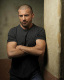 Dominic Purcell Dominic Purcell Fotografía