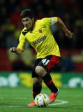 Fernando Forestieri Fernando Forestieri de Watford...