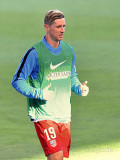 Fernando Torres Wikipedia la