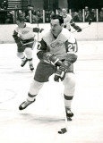 Frank Mahovlich Detroit Red Wing Hockey