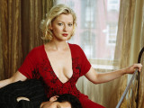 Fotos de Gretchen Mol Tv Series Posters