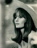 Jacqueline Bisset actriz británica nacida en pelíc...