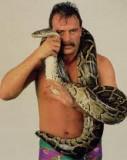 Jake Roberts Perfil de la partida Internet Wrestli...