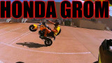 Jake TheGardenSnake Grom en Youtube Honda Grom
