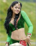 Tamil Actriz Karthika Nair caliente Navel Pics cal...