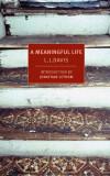 Revista BOMB L J Davis s Una Vida Significativa po...
