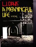 Vida Significativa by L J