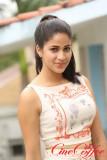 Actress Lavanya galería de fotos Actress Lavanya