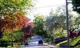 Lawrence Park es un barrio idílico situado en la